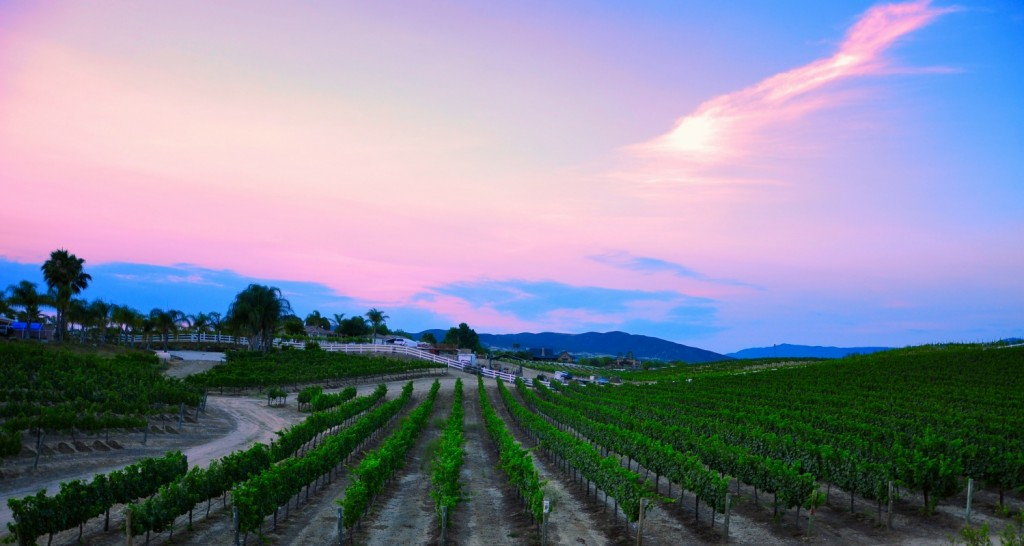 The Beautiful Temecula Valley, California