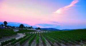 The Beautiful Temecula Valley, California